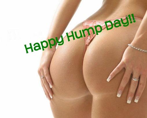 Andrew's Mind Delvings: Happy, Happy Hump Day!