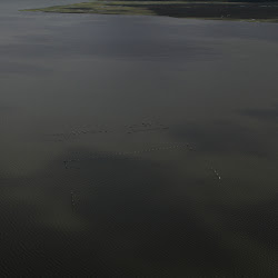 Coastal Flight July 19 2013 039