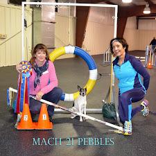MACH 21 Pebbles copy