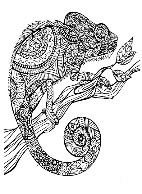 Free Coloring Page Coloringadultcameleonpatterns Magnificien Cameleon  To Color