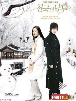 Phim Cây Thông Thiên Đường - Trees in Heaven (2006)
