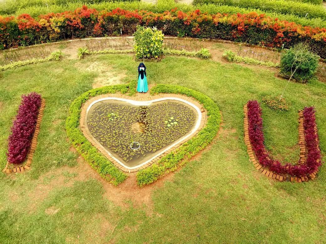 Masya Allah Bungasnyaaa Labirin Kebun Raya Banua Kalsel Berita Banjarmasin Situs Berita Data Referensi Warga Banjarmasin