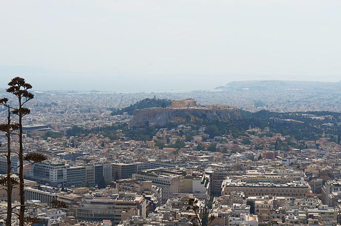 Atena36.jpg
