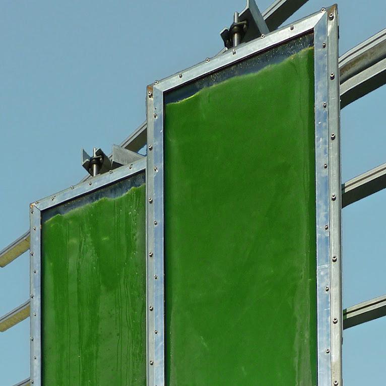 *真正的綠能建築BIQ:建築師Splitterwerk由海藻產生電能! 4