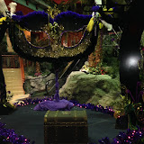 Mardi Gras New Year - IMG_0032.JPG