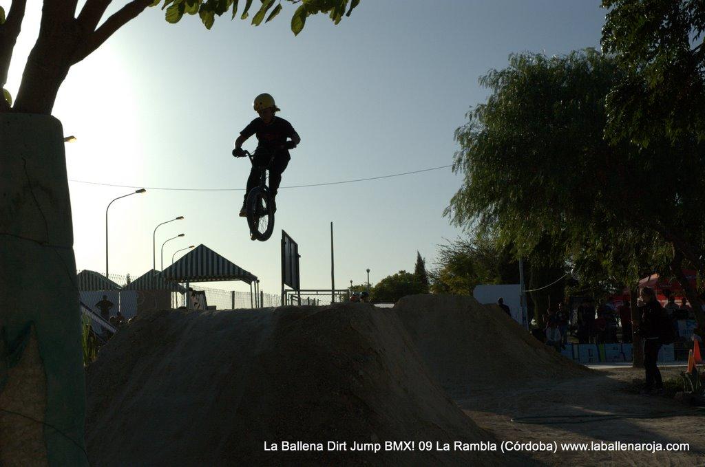 Ballena Dirt Jump BMX 2009 - BMX_09_0110.jpg