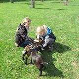 Welpen - Kinderboerderij & Crossbaan - IMG_2491.JPG