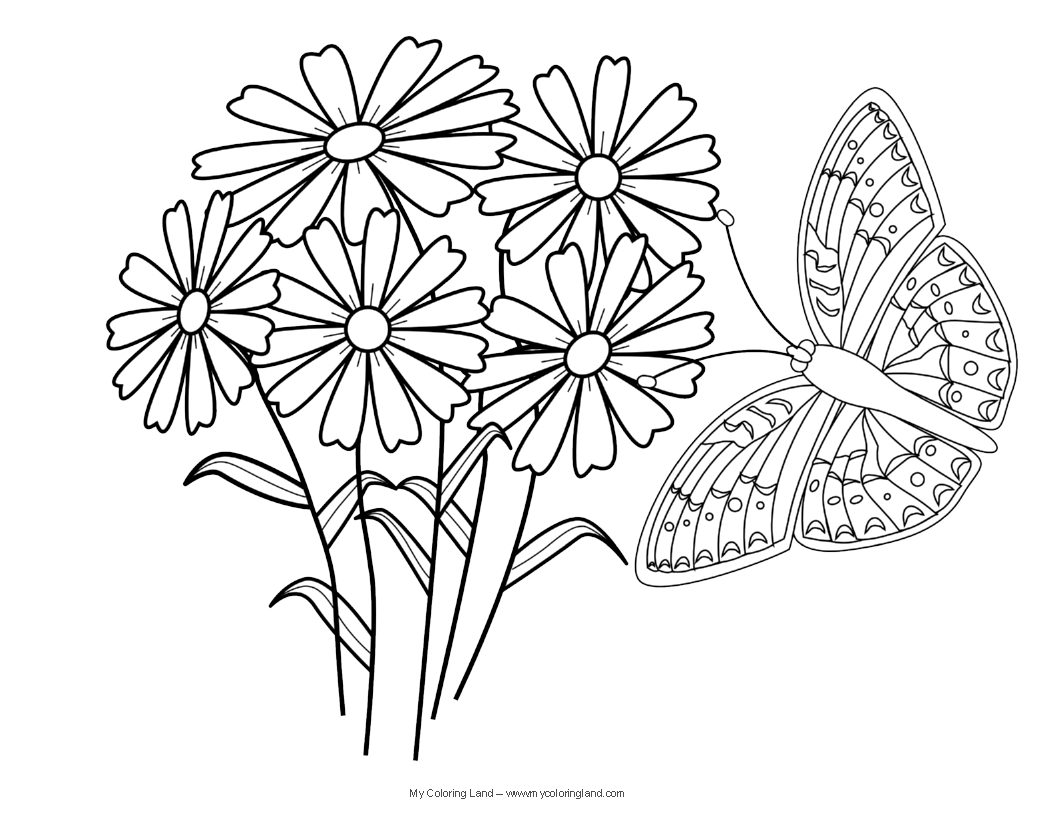 coloring pages of roses and butterflies - best free coloring pages of butterflies and roses image