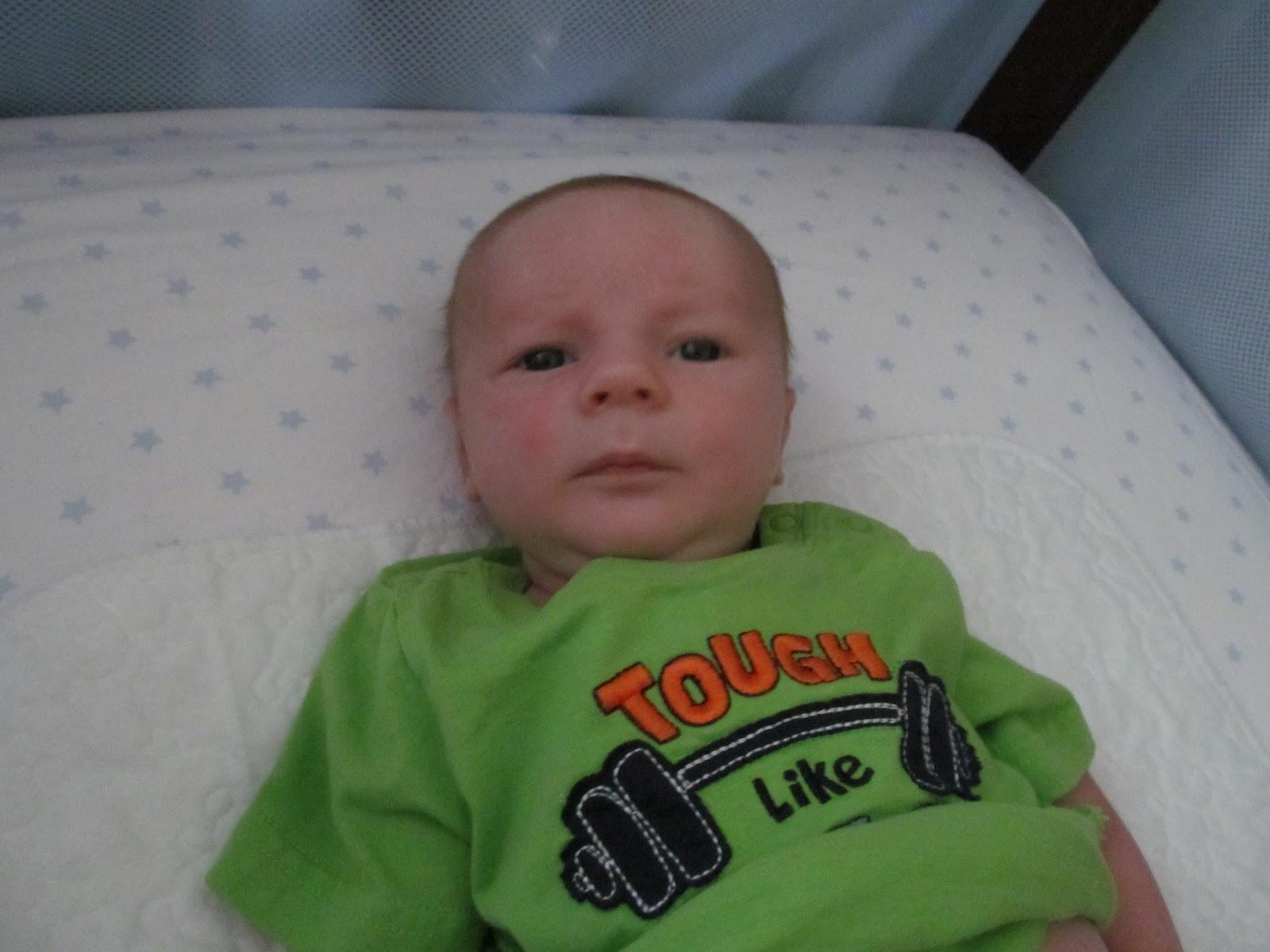 Meet Marshall! - IMG_0417.JPG