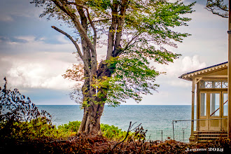 Photo: Weekend house by the sea