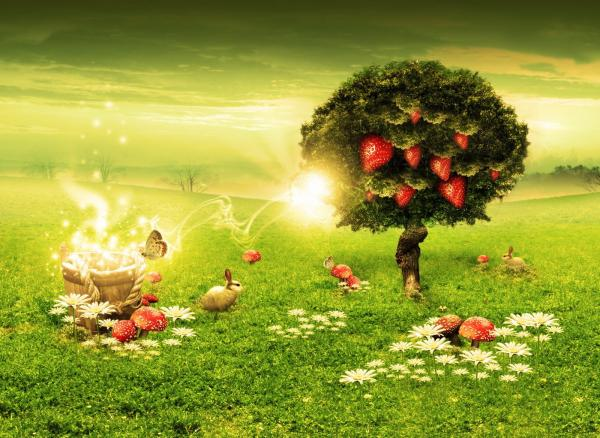 Strawberry Tree, Magick Lands 2