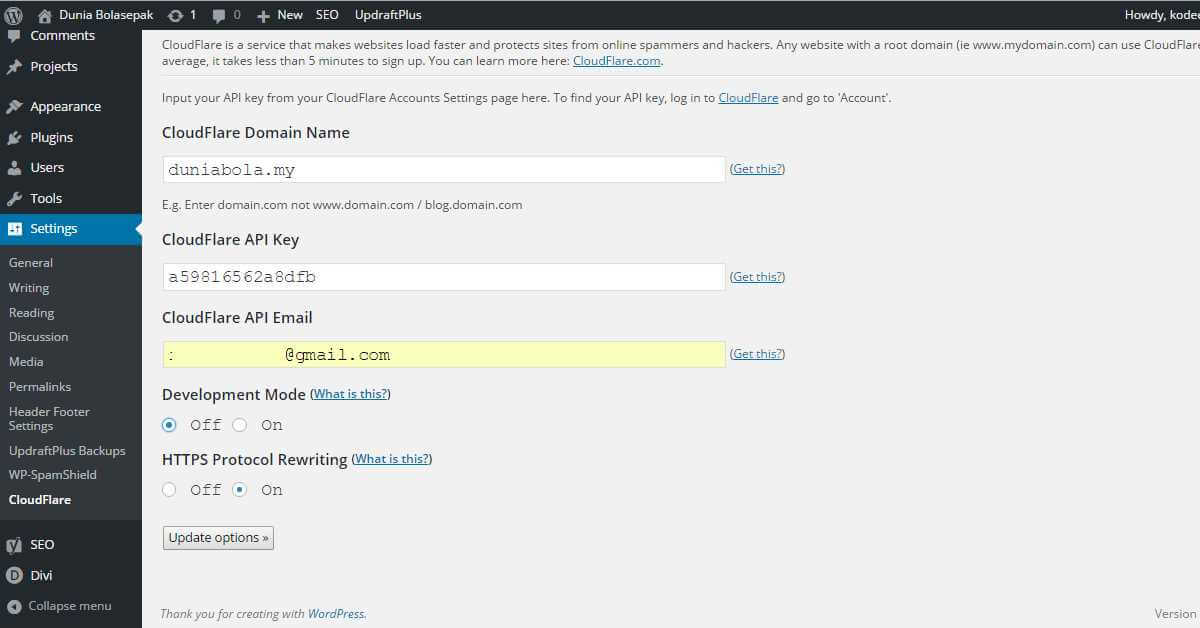 WordPress Cloudflare Plugin Settings