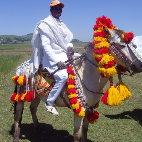 Horses are dressed up for special occasions and are seen as very important in Ethiopian culture