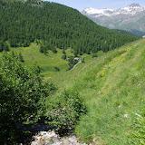 Val Fex : lieu de passage de Parnassius sacerdos (P. phoebus). Fex Curtins, 2100 m (Engadine, Grisons, CH), 12 juillet 2013. Photo : J.-M. Gayman