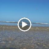 Surfside 2010 - ErCLzcR-RFxSN_noyARnpobE2-mpUMPXrcScPSTvR369XhoCkrn6jFjh3jSrGkJIuinKPKL8ATQ=m18
