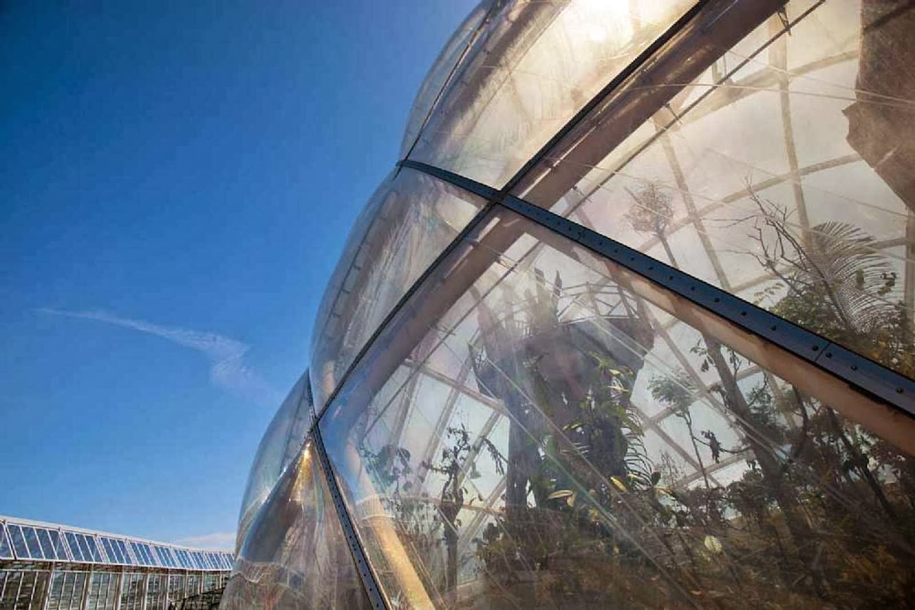 14-Greenhouse-in-the-Botanic-Garden-by-C.F.-Møller-Architects