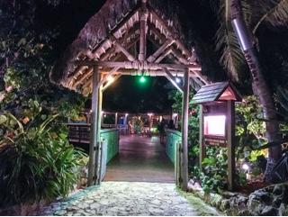 Pappagallo Grand Cayman