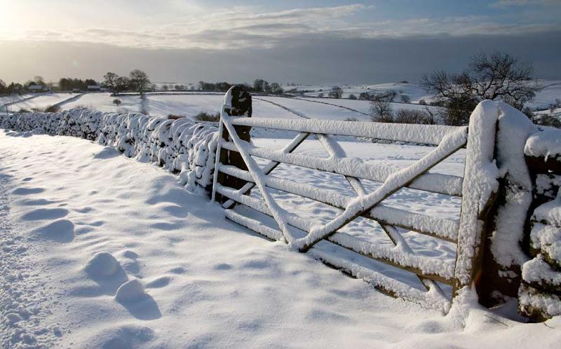 snow2010-1