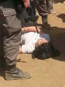 Berita Pelik Dari Penjara Mesir ..Satu Keajaiban Berlaku..Sila Baca