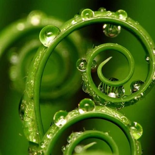 spirals_001