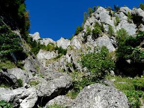 Photo: Mai sus de refugiul Costila, pe valea Costilei