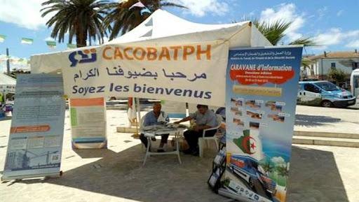cacobatph algerie