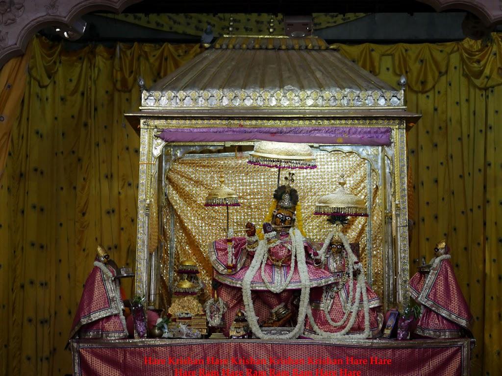 Radha Govind Devji Deity Darshan 30 Mar 2016  (5)