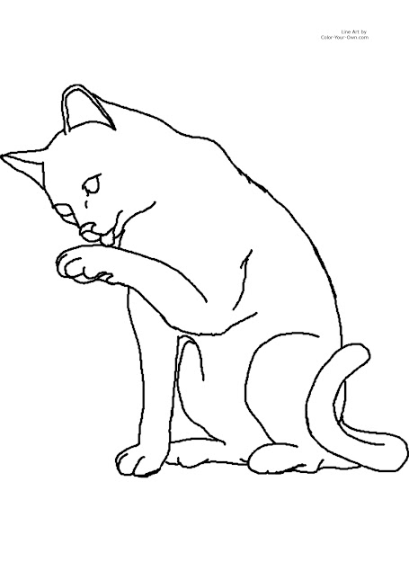 Cat Color Pages Printable   Printable Coloring Page For  By  Inch