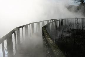 Steam-covered boardwalk, Rotorua Thermal Area