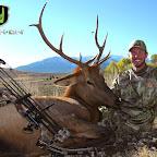62-ID Elk UA.jpg