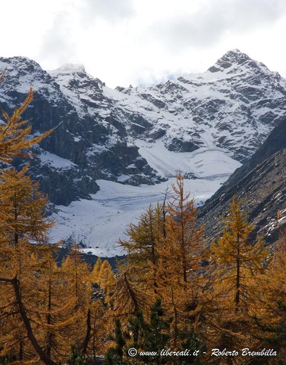 2015-10-11_Chiareggio-Porro_Valmalenco_110