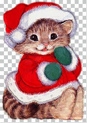 116_(XMAS)_Christmaskitty1[1].jpg