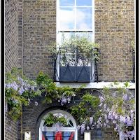 Greenwich112.jpg