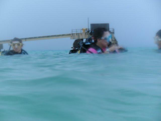Bonaire 2011 - PICT0251.JPG