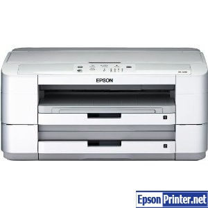 How to reset Epson PX-1200 with application