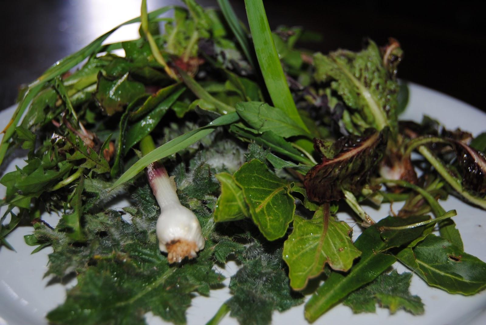 Lacuocapercasa torta salata con erbe di campo for Cucinare ortica