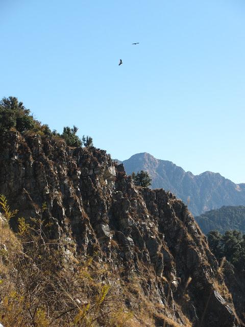 cliffside with updrafts