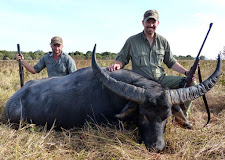 Mr Charlie Meyer, USA took this great old buffalo bull out on the Carmor Plains in June