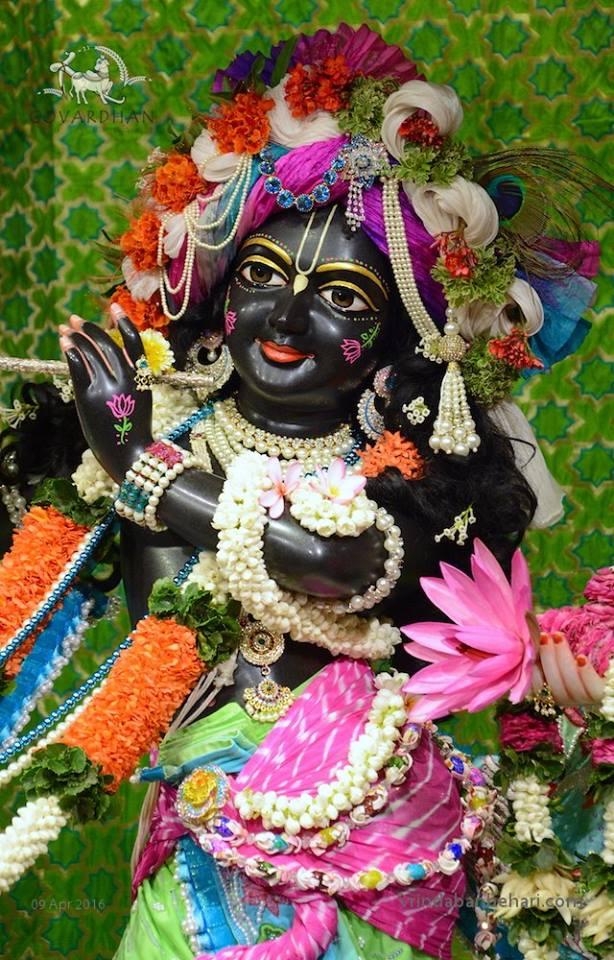 ISKCON Wada Deity Darshan 09 April 2016 (9)