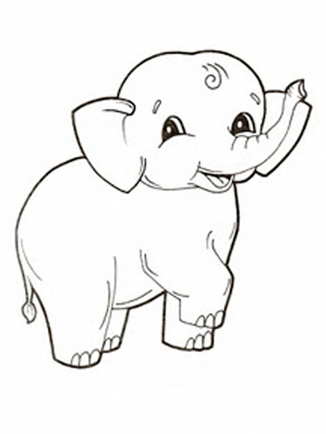 Coloring Pages Of Elephant