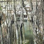 22 martie 2012 002.jpg