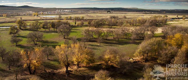 parque lineal del manzanares tramo 3