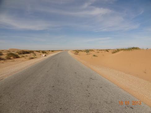 Marrocos e Mauritãnia a Queimar Pneu e Gasolina - Página 7 DSC06067