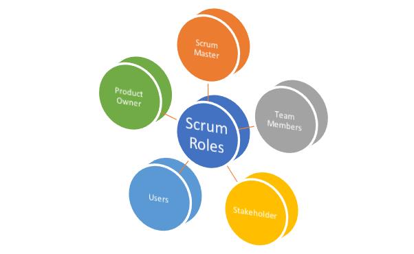 Agile project management roles