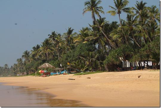 Ланка (182)