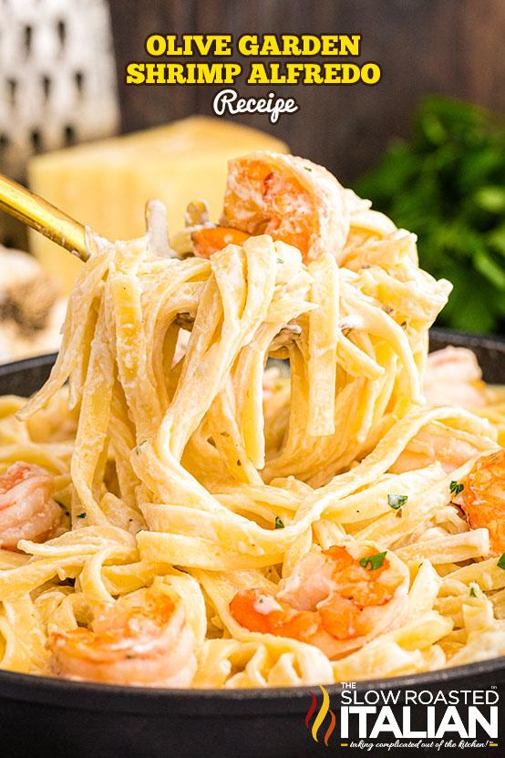 Olive Garden Shrimp Alfredo Recipe forkful of pasta and shrimp