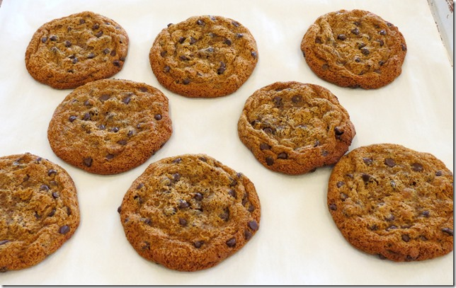 MELT Grain Free Chocolate Chip Cookies