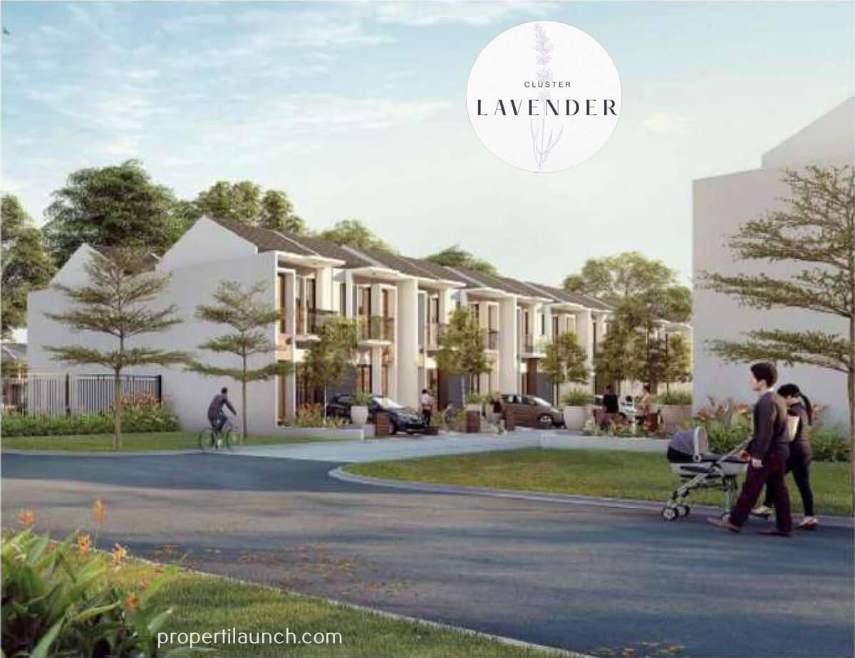 Cluster Lavender Puri Botanical