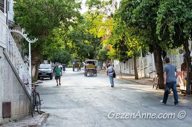 Heybeliada sokakları