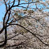 2014 Japan - Dag 7 - tom-SAM_0469-0039.JPG